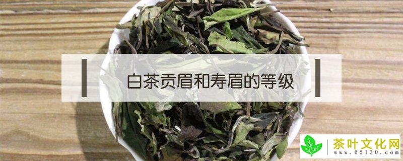 白茶贡眉和寿眉的品级