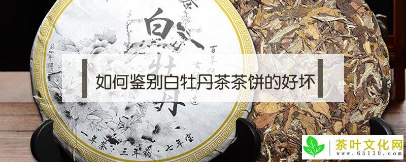 如何鉴别白牡丹茶茶饼的优劣